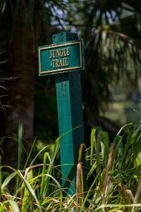 Orchid Island Jungle Trail