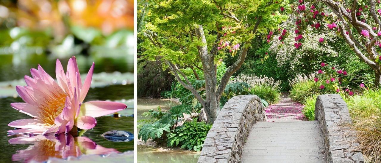 The Magic of McKee Botanical Gardens